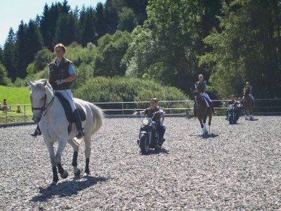 Pferd vs. Harley