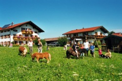Ortner Ferienhof Traunstein