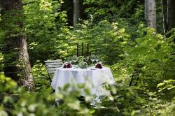 Romantisches Plätzchen im Wald