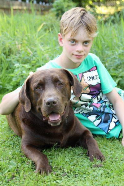 Unser freundlicher Hofhund Paul freut sich über Streicheleinheiten.
