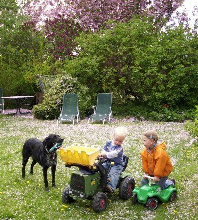 Spielende Kinder mit Hofhund Linda