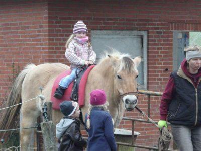 Kinder auf dem Pferd Reika