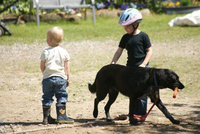 Hofhund Linda mit Kindern