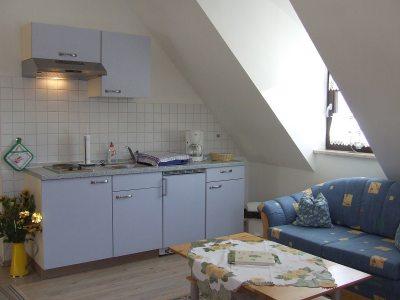 Appartment Lohtal: Küche im Wohn-Schlafraum