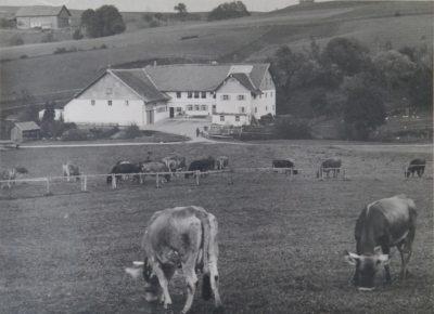 Mühlenhof ca. 1950