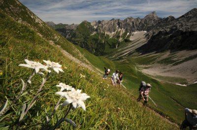 Bergtour in den Allgäuer Alpen