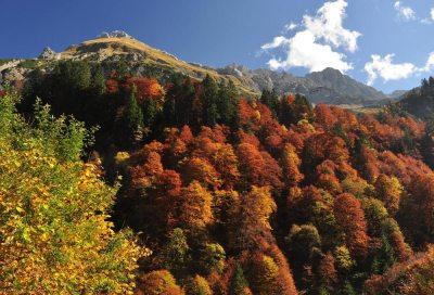 Herbst im Ostrachtal