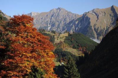 Herbst im Obertal
