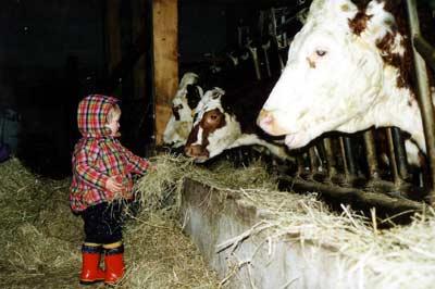 Kind beim Füttern